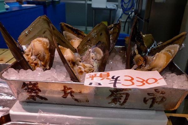 Gigantische Muscheln, Tsukiji Outer Market