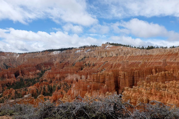 Bryce Canyon, Queens Garden-Navajo Loop Trail