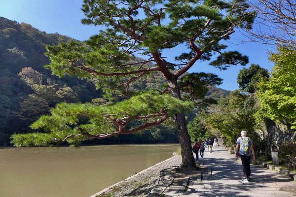 Arashiyama ist ein beliebtes Ausflugsziel der Japaner