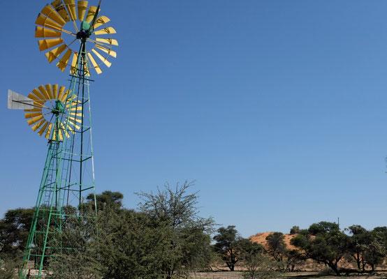 Windrad-Brunnen der Farmer Namibia