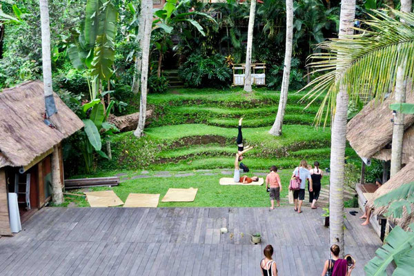 Yoga Barn Ubud Outdoor Space