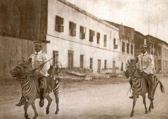 Tansania Reisebericht