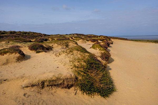 'Klein Afrika' am Morsum-Kliff
