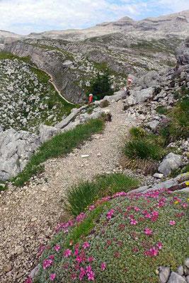 Weg von der Fanes Hütte zum Forcella Medesc Sattel