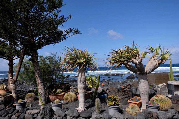 Dorf El Golfo auf Lanzarote
