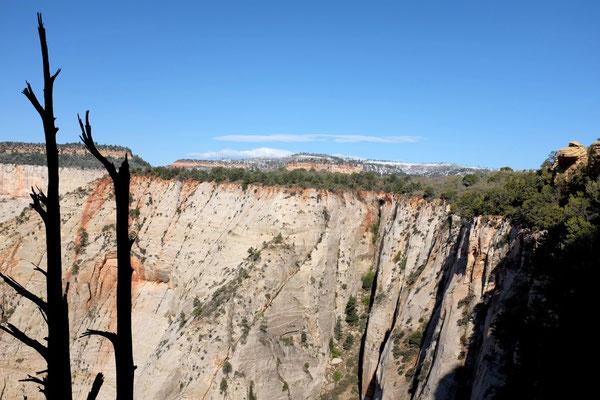 White Cliffs vom Observation Point Trail, Zion NP Wanderung