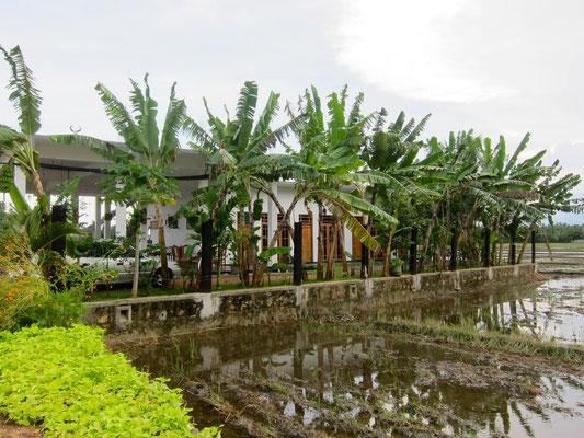 Im Reisfel Guesthouse SERENE PARK Tissamaharama, Sri Lanka