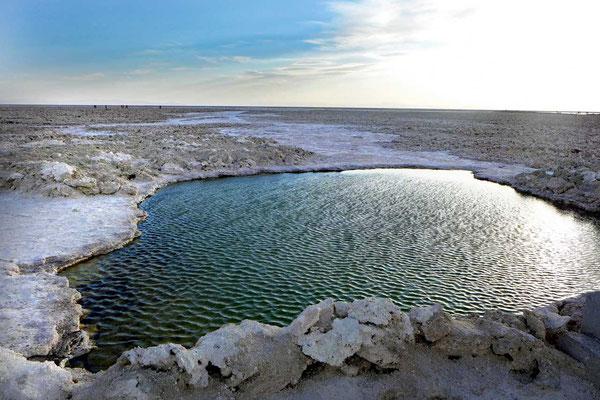 Laguna Chaxa am Salar de Atacama
