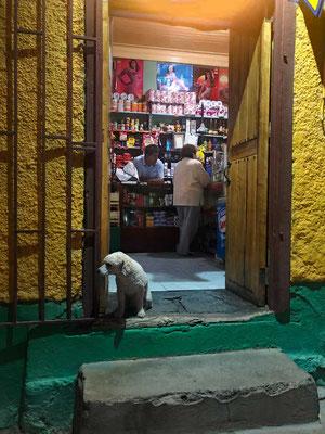 Laden in Pisco Elqui
