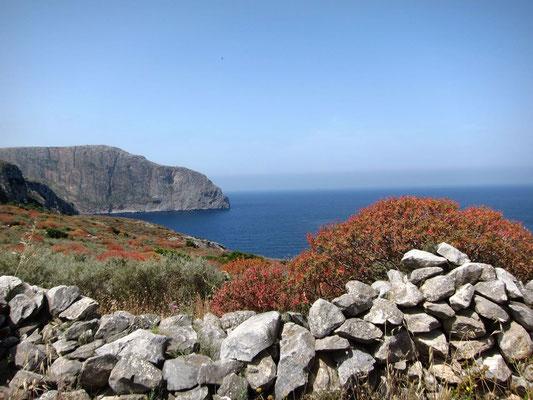 Steine und Olivenbäume gibt es in der Mani zuhauf