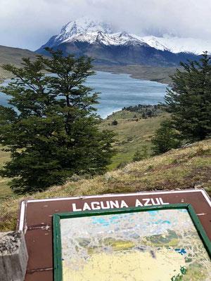 Ausblick Laguna Azul Torres del Paine