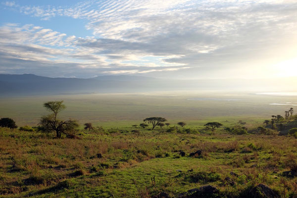 Lanschaft auf dem Weg zum Ngorongoro Gate