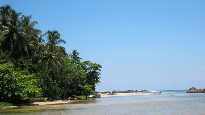 Madu Ganga River Safari, Mündung ins Meer, Sri Lanka