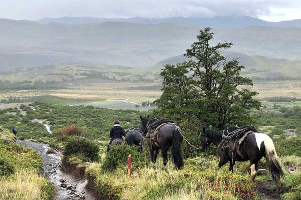 Versorgungspferde-Treck im Torres del Paine