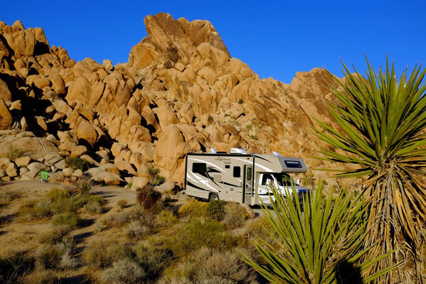 Campsites Indian Cove Campground Joshua Tree National Park