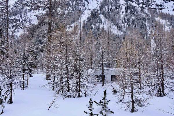 Winter Campingplatz Morteratsch im Schweizer Engadin