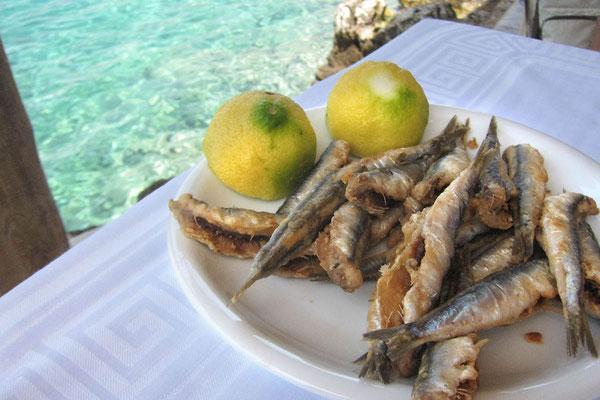 Ein Gedicht, die frischen Sardinen, Mani Peloponnes
