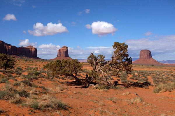 Wildcat Trail Monument Valley Wanderung