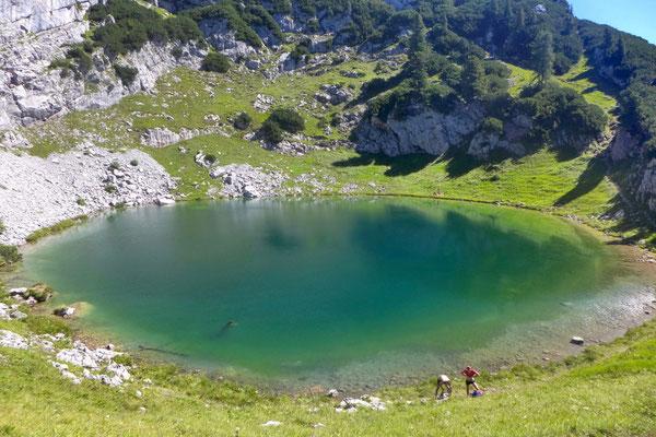Willkommene Abkühlung im Seehornsee