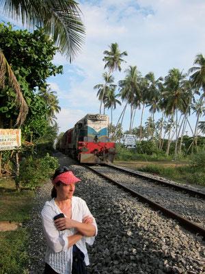 Einsenbahn von Colombo nach Galle, in Bentota