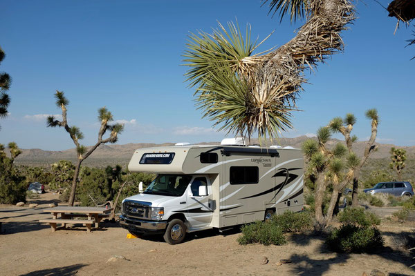 Black Rock Campground, Joshua Tree NP