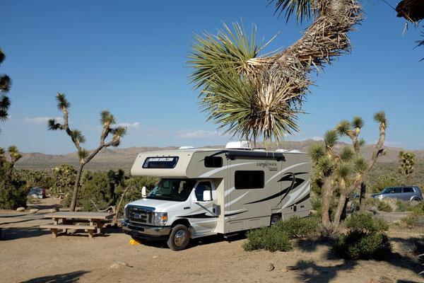 Black Rock Campground Joshua Tree NP
