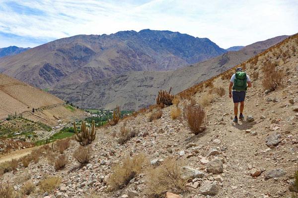 Wanderung zum Mirador Pisco Elqui