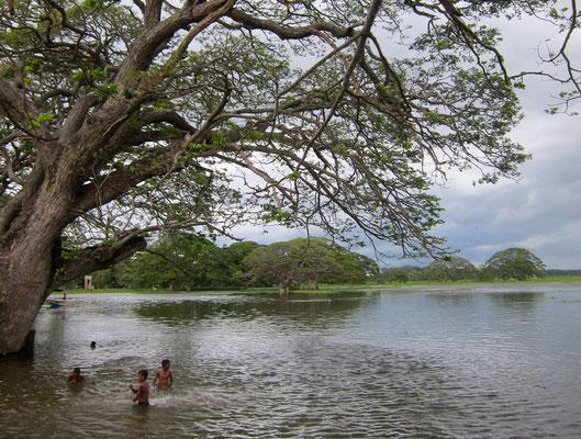 Tissamaharama Tissa Wewa lake Sri Lanka