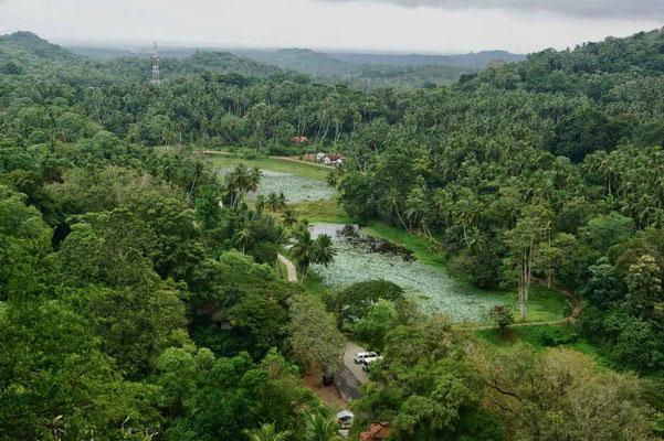 Sri Lanka Felsentempel Mulkirigala Ausflug Tangalle