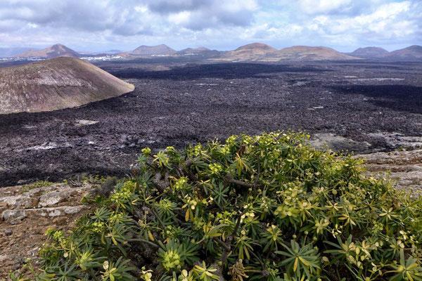 Ausblicke vom Kraterrand der Caldera Blanca, Lanzarote