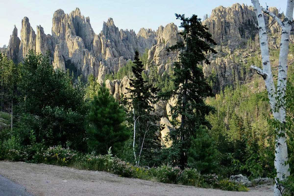 Landschaft am Needles Highway Black Hills