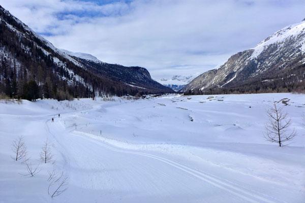 Langlaufen druchs Val Bernina