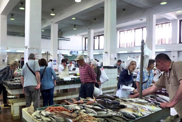 Fischhalle in Zadar