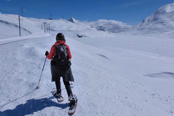Schneeschuhwandern am Bernina Pass / Diavolezza