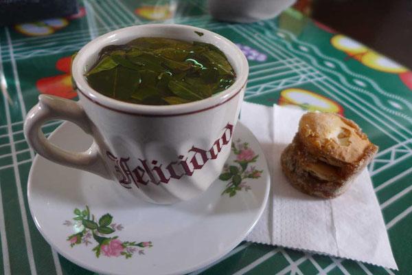 Coca Tee Altiplano Chile