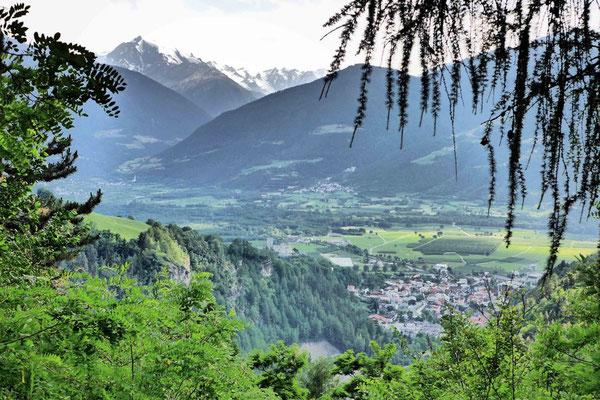 Ausblick ins Vinschgauer Tal