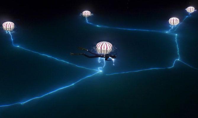 Nachtschnorcheln mit Medusa vorm Hotel Bellevue Losinj