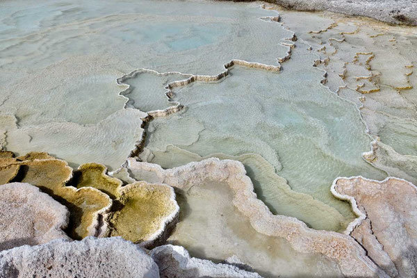 Kalksinter Mammoth Hot Springs