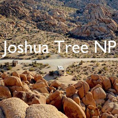 Wohnmobilreise USA Südwesten Joshua Tree