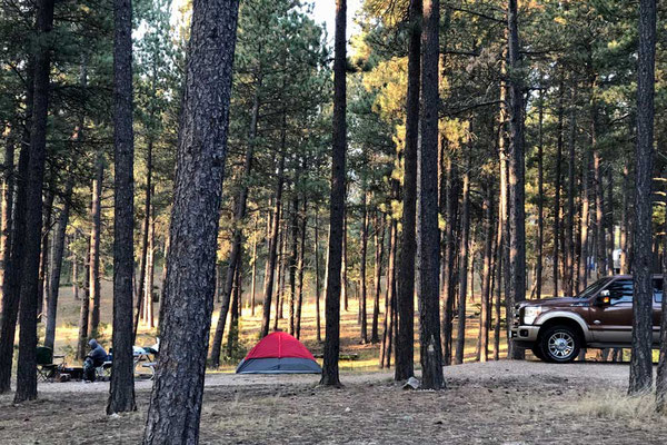 Schöner Waldplatz Blue Bell Campground Custer Stake Park