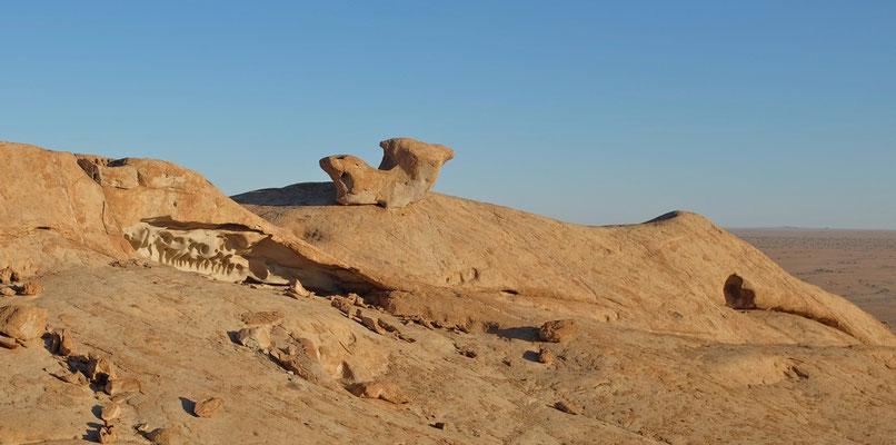 """Steinformationen mit """"Saurierkopf"""" Blutkuppe Namibia"""