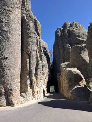 Enger Tunnels Needles Highway Black Hills