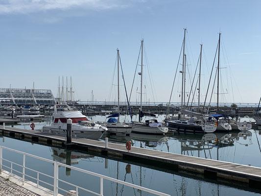 in die Marina Parques das Naciones ... sprich die Marina auf dem alten Expo-Gelände ...