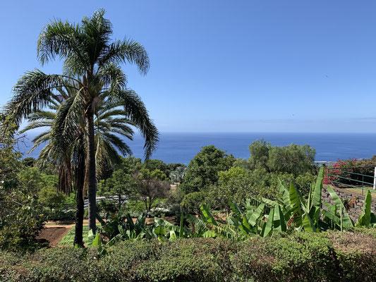 ... der botanische Garten war ganz nett ..