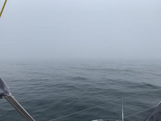 Nach einem Tag Pause in Burgtiefe und einem Treffen mit Nancy und Harald von der Hanse 388 Moneypenny geht es hinaus in den Nebel nach Warnemünde, um den Radar zu testen!