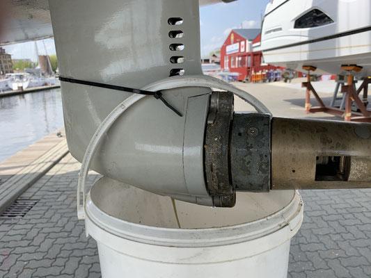 Der 50 h Motorservice beinhaltete eine Motorölwechsel und auch einen Ölwechsel im Saildrive (siehe Foto) ...