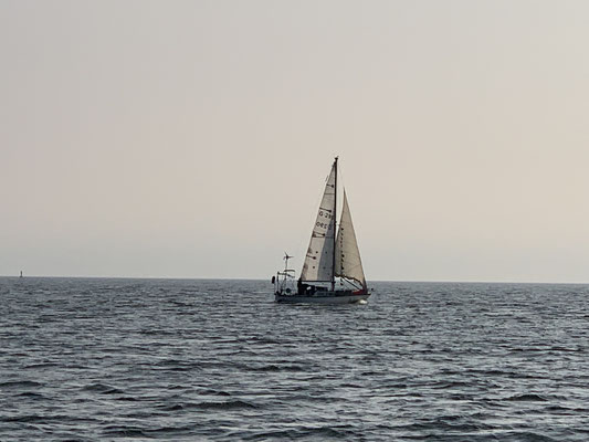 """Auf der Nordsee treffe ich auf die """"Andiamo"""" ... hatte vor einigen Wochen einen Artikel über zwei Stralsunder gelesen, die mit der Andiamo eine Atlantikrunde gesegelt sind ... ich Segel los, die kommen zurück! Das ist ein Zufall!"""