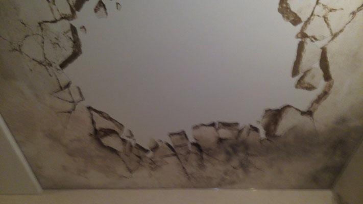 натяжные потолки липецк дабл вижн фото подсветкой задонск