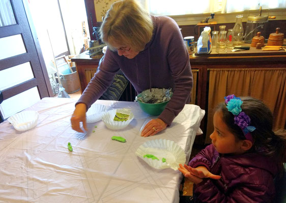 Making pea pods and peas