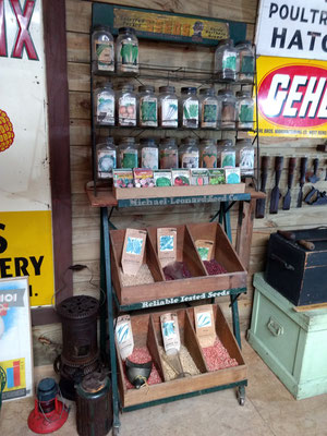 """Selected Tested"" seed display (photo by Arlene)"